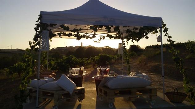 Posta de sol entre vinyes a Ca n'Estella