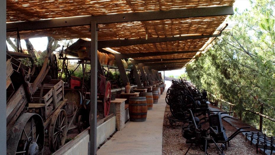 Visita d'enoturisme a Castellroig