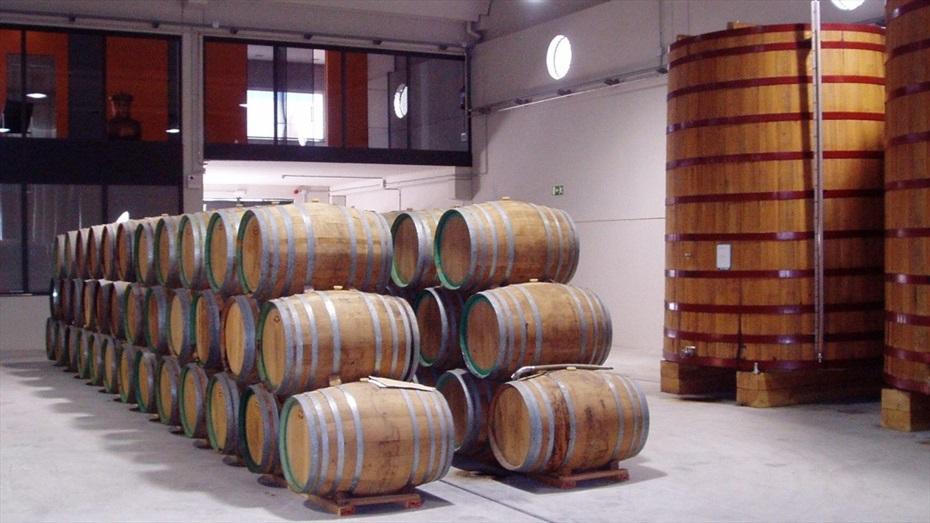 El perfum del vi: visita enoturística a la Destil·leria Mascaró