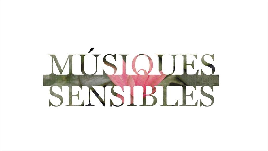 Joshua Radin - Músiques Sensibles 2016