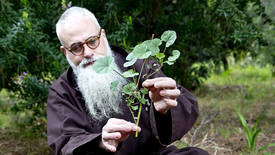 Descobreix els secrets de les herbes remeieres dels convents caputxins