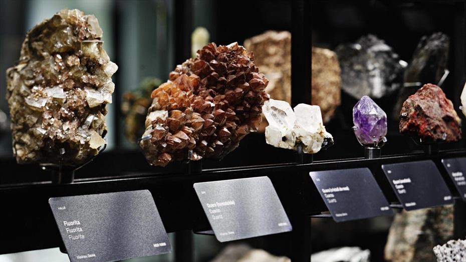 Museu Blau (Museu de les ciències naturals)