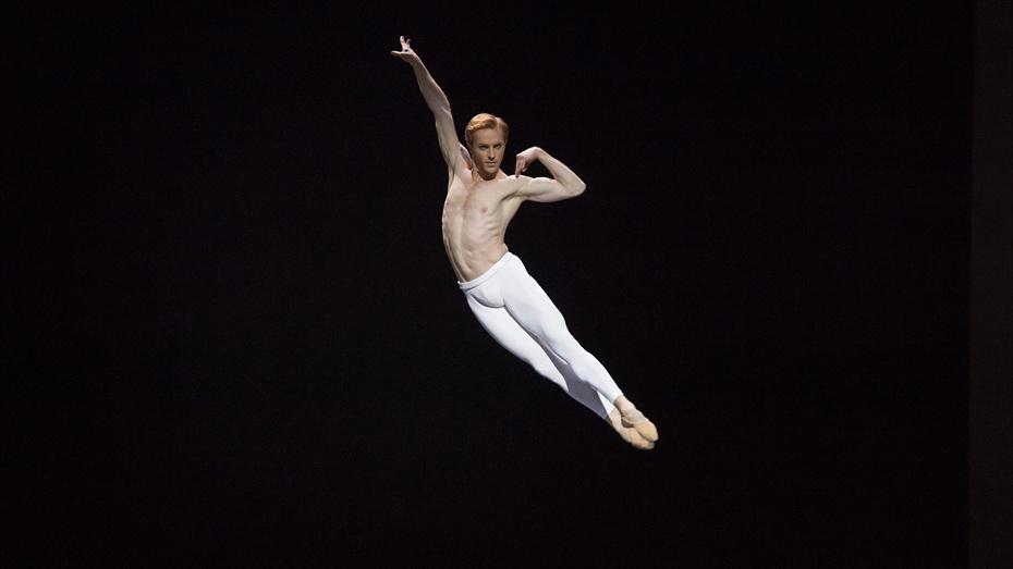 Estrelles del Royal Ballet - Centre Cultural Terrassa