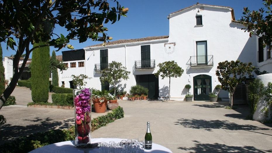 Esmorzar de pagès entre vinyes i visita guiada a Ca n'Estella