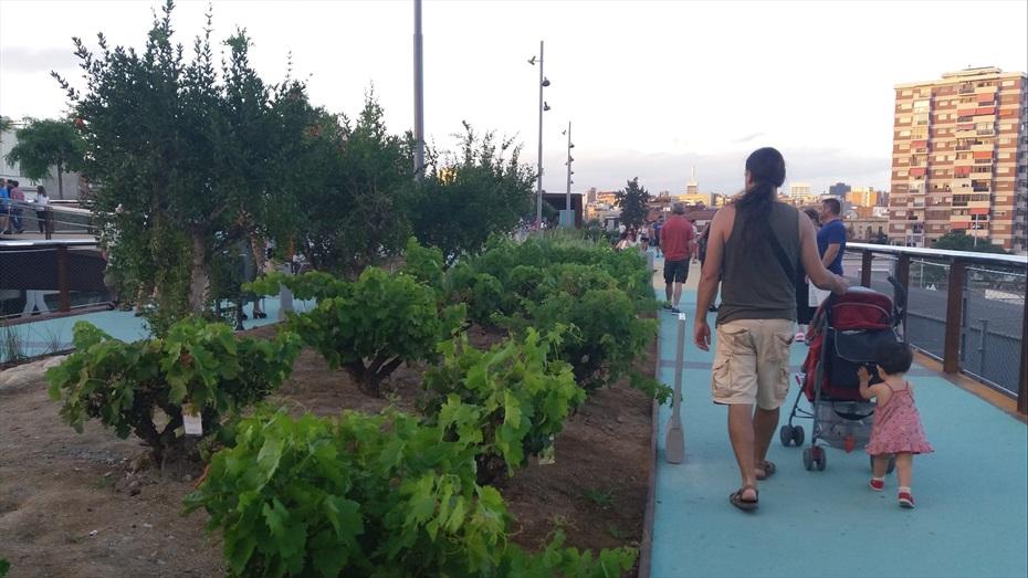 Materia Bcn: Redescobrint el barri de Sants