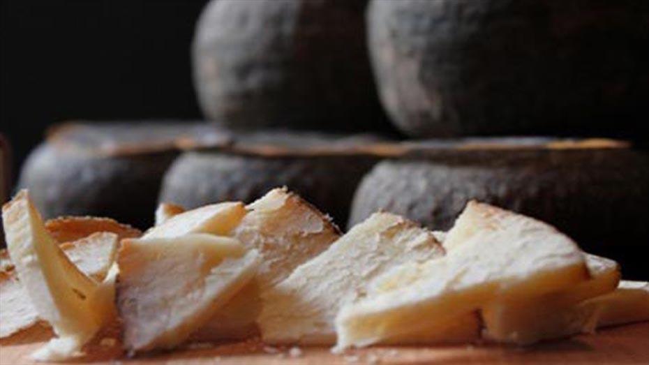 La volta al món amb 6 vins i formatges