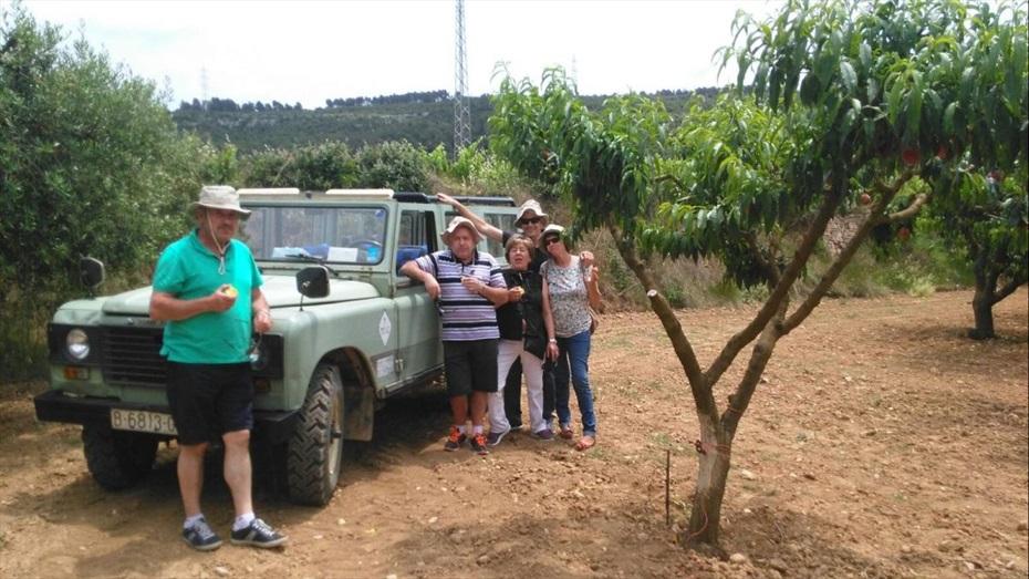 Tour amb Land Rover per les vinyes + Visita i tast als Cellers Cuscó Berga