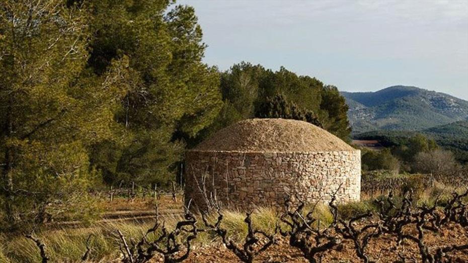 Ruta La Pedreseca a Vins i Caves Cuscó Berga