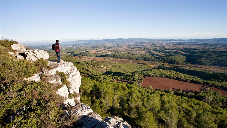 Circuït de BTT i senderisme a Vins i Caves Cuscó Berga