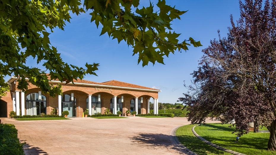 Maridatges de 4 Vins i 4 Pernils Ibèrics + Visita a Cellers Torres