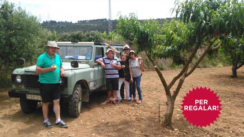 Regala un Tour amb Land Rover per les vinyes + Visita i tast a Cuscó Berga