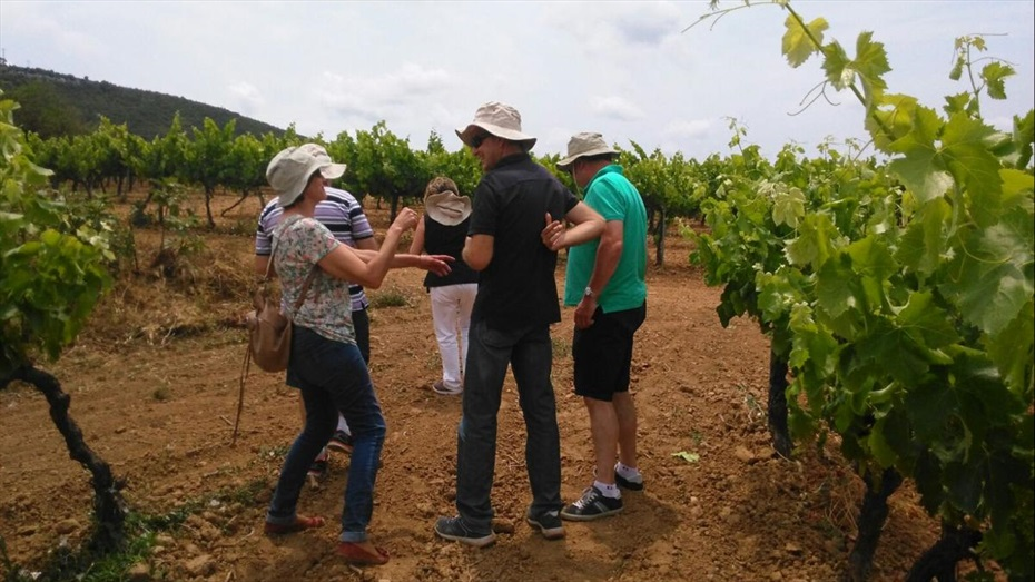 Visita i tast a Cuscó Berga + Pessebre Vivent de Les Gunyoles