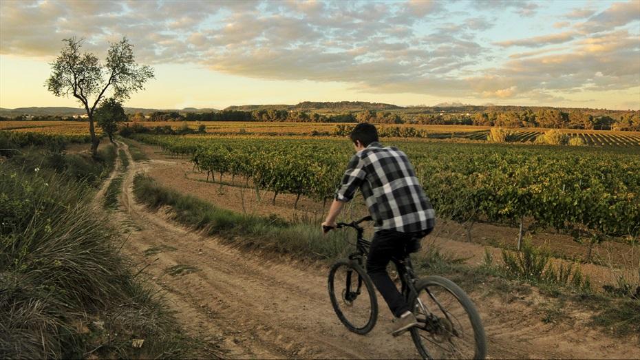 Ruta en bicicleta als Cellers carol Vallès