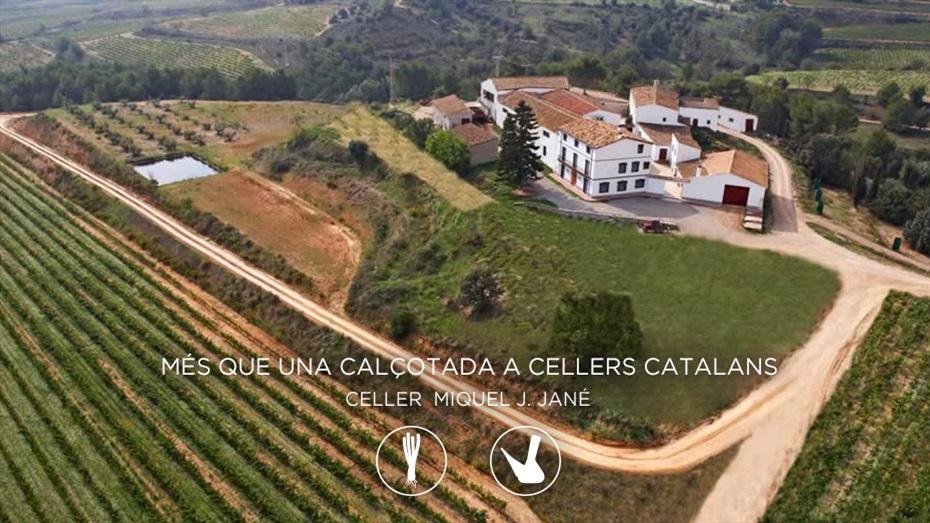 Calçotada enològica al celler Miquel J. Jané amb visita i degustació de vins