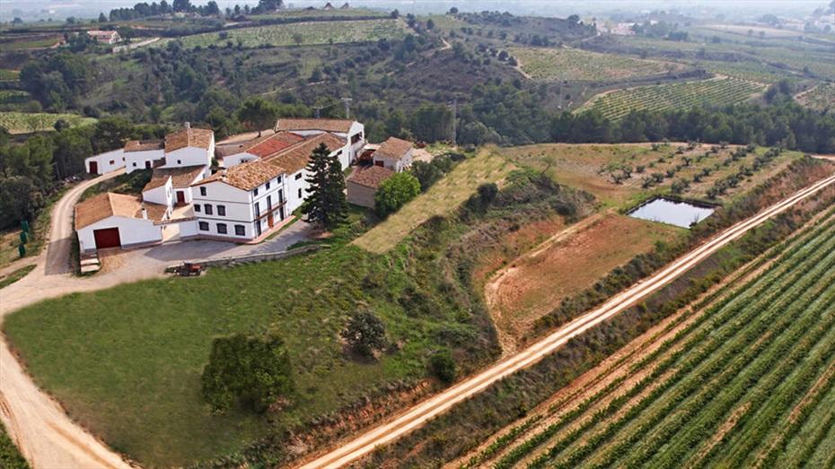 Menú a la brasa, visita i degustació de vins al celler Miquel Jané