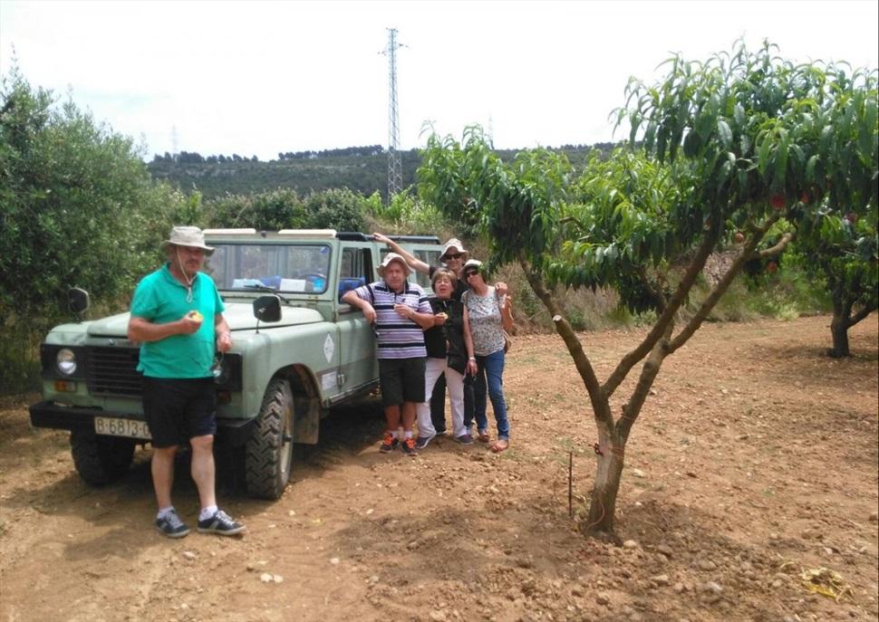 Tour amb Land Rover per les vinyes + Visita i Tast a Cuscó Berga