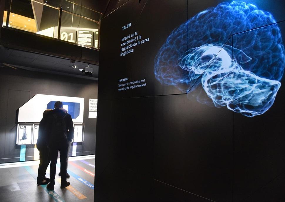 Cicle de conferències al CosmoCaixa: Llenguatge i cervell