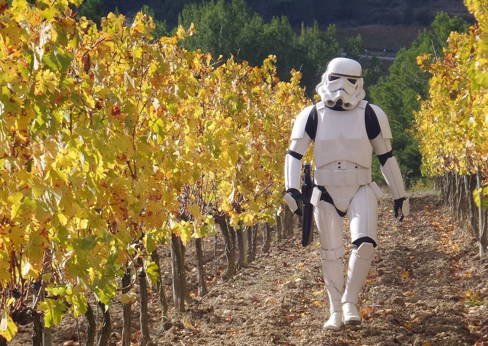 Jornada Star Wars al celler Mas Rodó