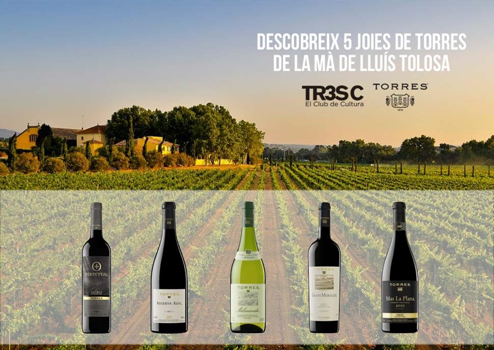 Tast exclusiu dels 5 millors vins de Torres amb Lluís Tolosa