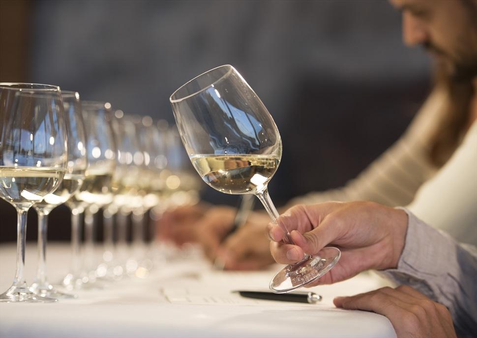 Visita + Tast de vins monovarietals + Aperitiu maridat al celler Familia Torres
