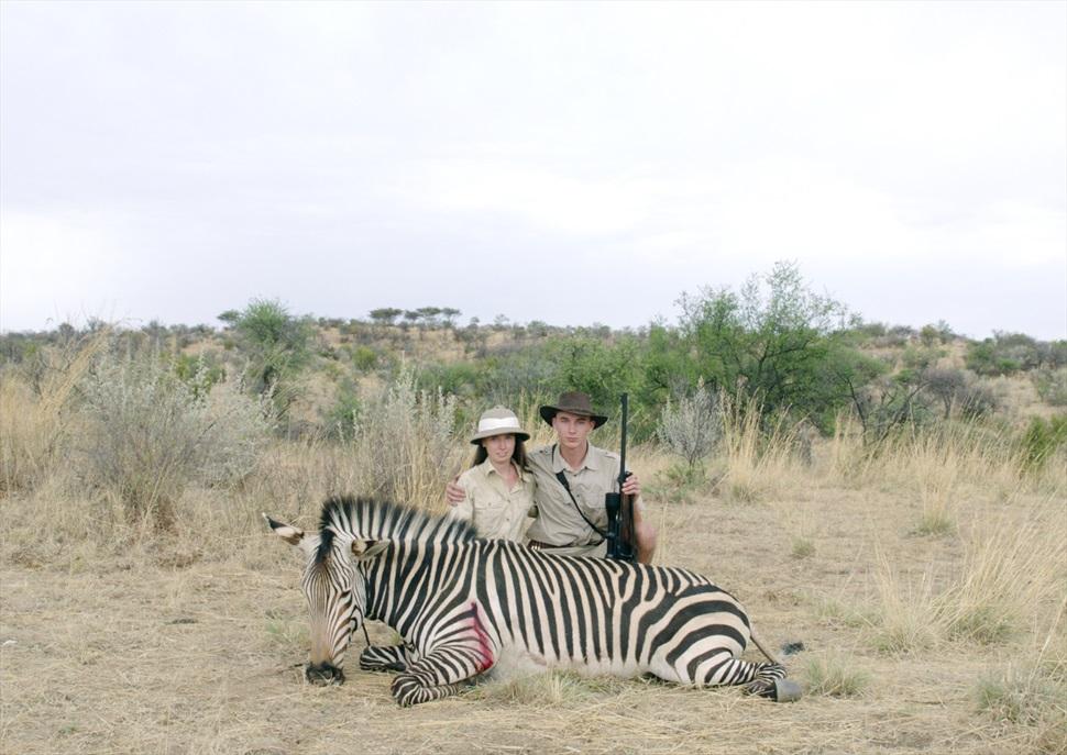 Safari · FESTIVAL PROTESTA