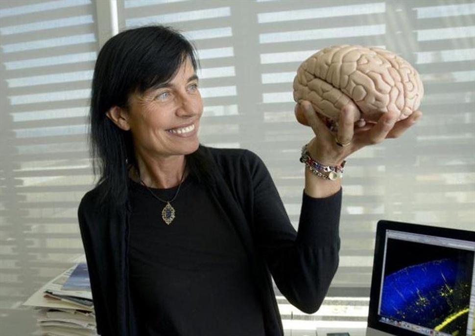 El cervell i els límits de la realitat. Conferència de Mara Dierssen