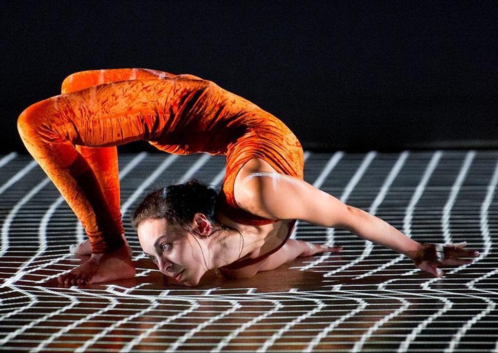 Quinzena Metropolitana de Dansa: Pixel