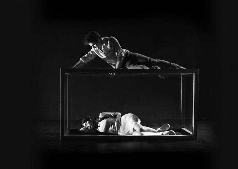 Romeu i Julieta i Projecte Ingenu, 5 anys i 3 Shakespeares