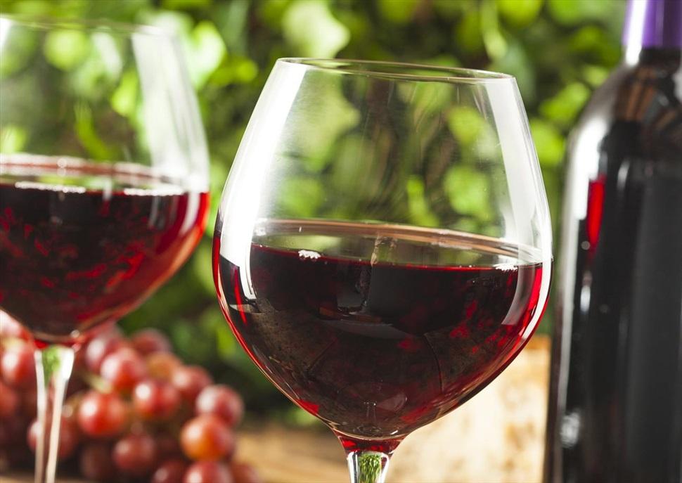 Tast de vins al mercat de Santa Caterina: Cooperativa L'Olivera, masia Can Calopa